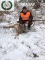 Загонная охота 2016