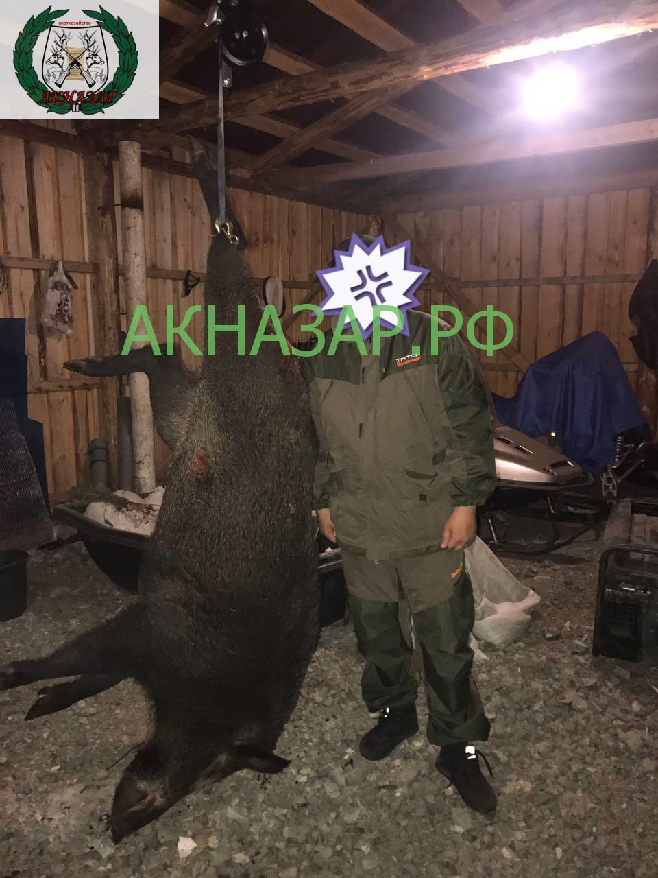 Охота с вышки